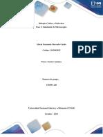 Fase 3_ Biologia Celular y Molescular