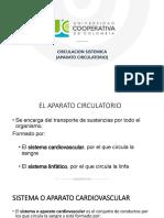 CIRCULACIONES(1)