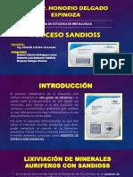 Procesos Sandioss 3.0