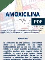 Amoxicilina