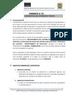 Memoria Descriptiva Formato Nº 07 Canal Trabaja Peru