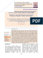SSR Marker-Based Molecular Characterization of Some Upland Taro