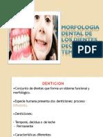 EXPO ODP-convertido.pdf