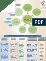 Plan Bicentenario PPT EJE 6