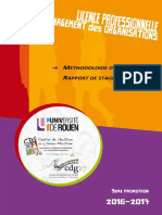Méthodologie Du Rapport de Stage