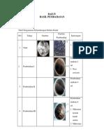 Bab 4 Perkembangan Embrio Katak