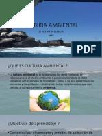 Presentacion Cultura Ambiental