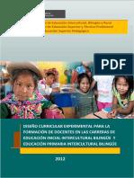 DCExp_INIPRIMEBI.pdf