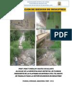 PLAN DE GESTIÓN DE RIESGOS DE DESASTRES.docx