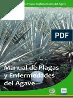 Manual de Agave Mezcalero