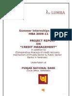 Pnb Summer Internship Report2010 by Abhishek Singh