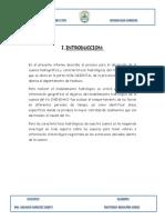 317404361-INFORME-MATIENZO-docx.docx