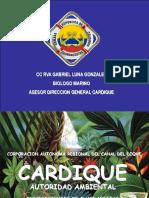 Presentacion Procedimientos Guardacostas Incidentes Materiales Peligrosos en El Mar 2009