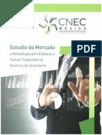 Estudio de Mercado y Metodología para Elaborar y Evaluar Propuestas de Servicios de Consultoría 2019