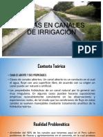 Fallas en Canales de Irrigacion