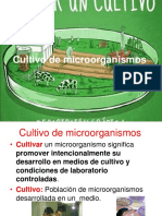 Clase 11 Cultivo de microorganismos.pdf