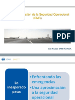 10_SMS.pdf