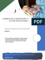 adapatacion de la vida intrauterina