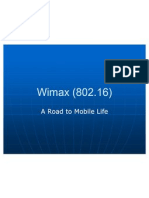 38488322-Wimax