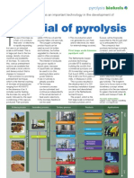 2010-04 BTG-BTL in Biofuels International With Pyrolysis Oil Developments