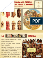 EVOLUCION HUMANA UCEVA.pdf