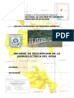 Informe Del Gera