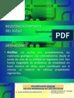 Sensitividadytixotropia.pptx
