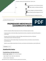 Propiedades Medicinales Del Nim (Azadirachta Indica) – Botanical-Online