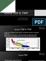 Aceros trip y twip