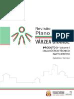 Plano Diretor VG 1.pdf