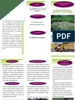 297867997-triptico-deforestacion.pdf