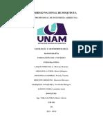 MONOGRAFIA-FORM.DEL UNIVERSOdocx.docx