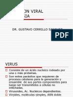 INF.VIRUS.ppt