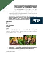 Aporte Trabajo Colaborativo , Propuesta Del Cacao