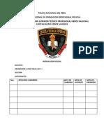 Monografia de Instruccion Policial