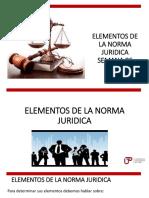 elementos de la norma jurídica