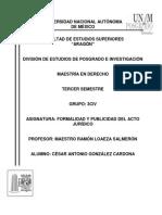 Tarea Formalidad y Publicidad Del Acto Jurídico Tesis Articulo 4o Del Cfpc