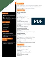 CV 3.pdf
