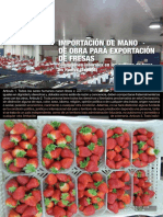 uy37.pdf