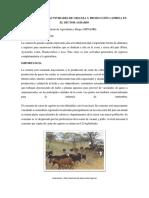 Situación de Las Actividades de Crianza y Producción Caprina en El Sector Agrario