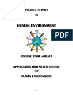 AHE Pro Human Environment Typed