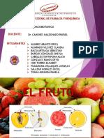 Expo Fruto