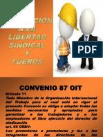 Convenio 87 OIT