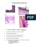 Integumentary Practice Test.pdf