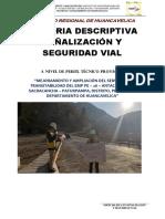 Asistente - Informe de Señalizacion y Seguridad Vial