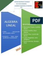 Aplicacion Del Algebra Final