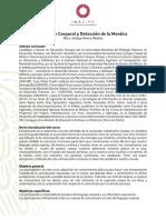 3C Lenguaje Corporal y Deteccion de La Mentira