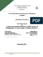 Sample Term Paper Report