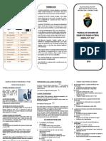 Triptico Manual Radio Tetra Portatil Pt 580h