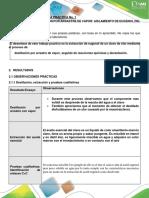 FORMATOS DE INFORMES DE LABORATORIO - QUÍMICA ORGÁNICA_2019_02 (1)